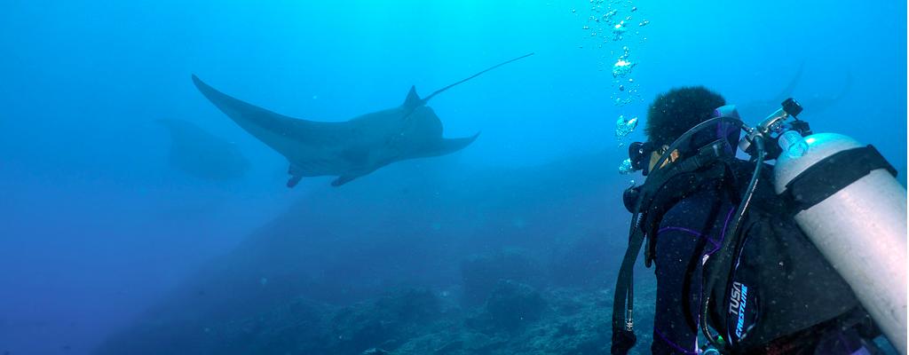 duiken op Bali